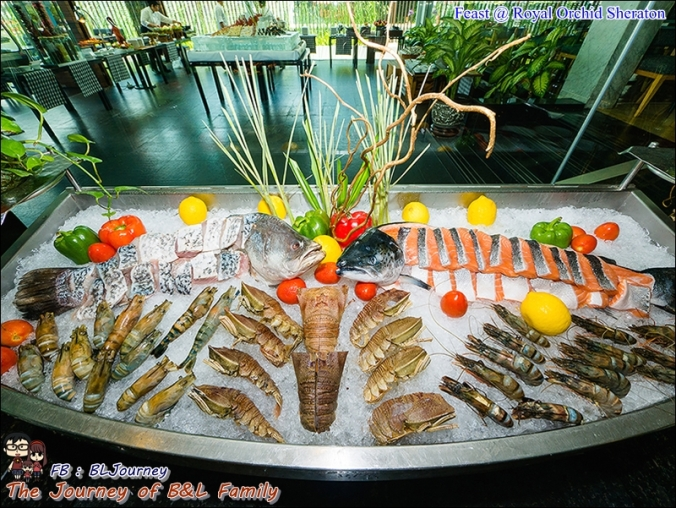 Feast@Royal Orchid Sheraton261